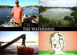 Watershed Postcard