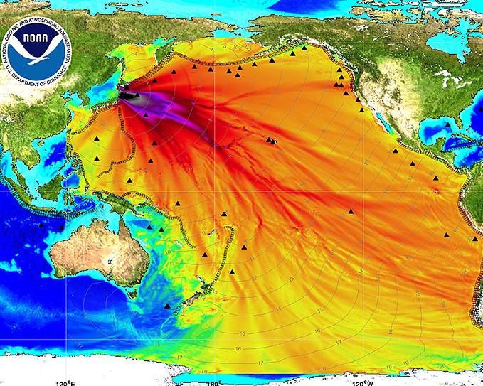 Crowdsourcing Fukushima Research