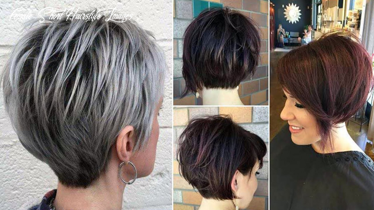 Newest short haircuts for women   short womens hairstyles and haircuts & haircut short video female short hairstyle images