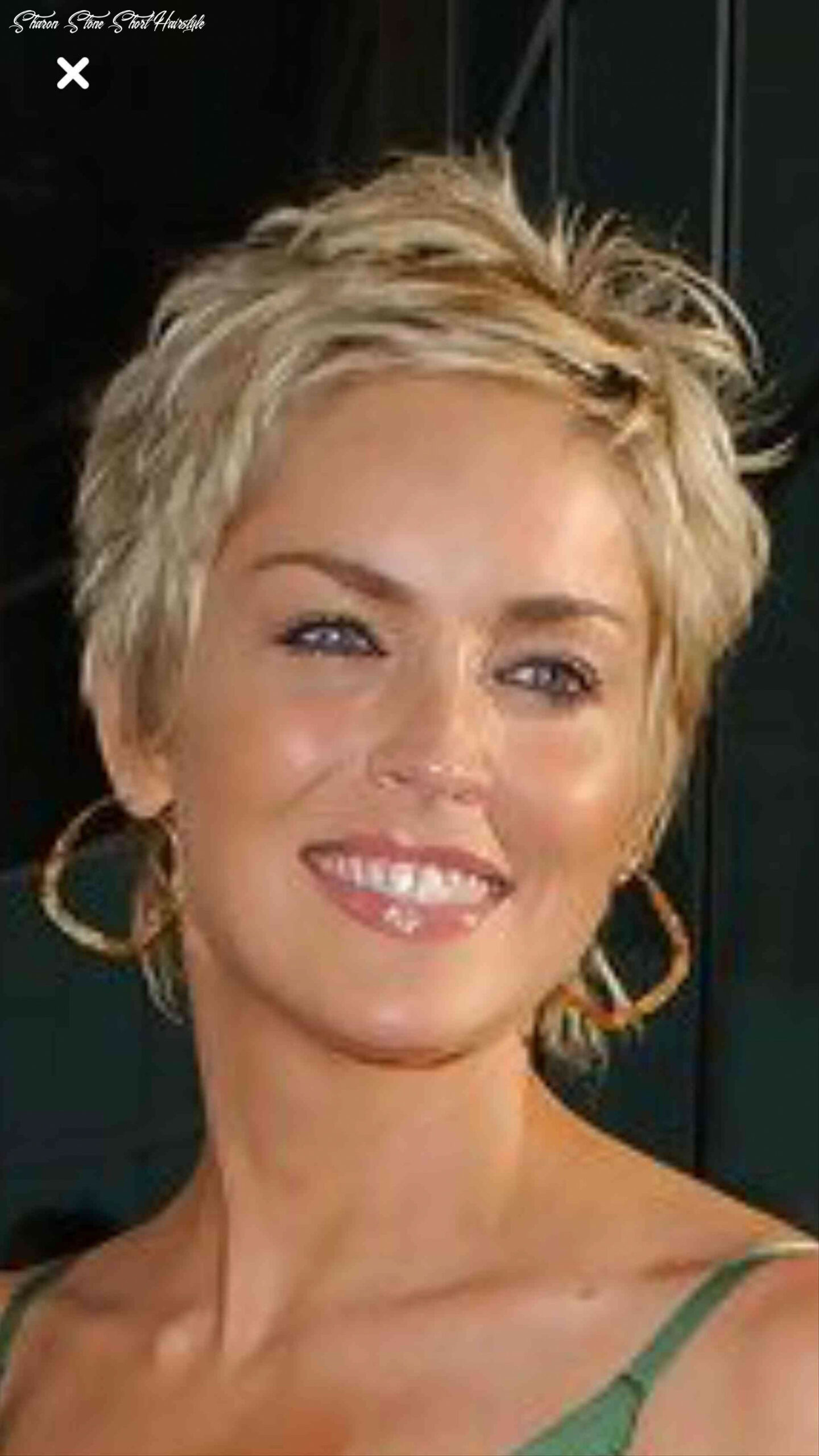 Sharon sharon stone very short hair stone short hairstyle pictures