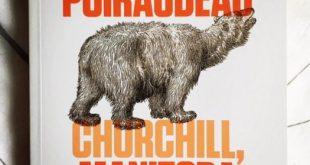 Churchill Manitoba, Anthony Poiraudeau, Inculte