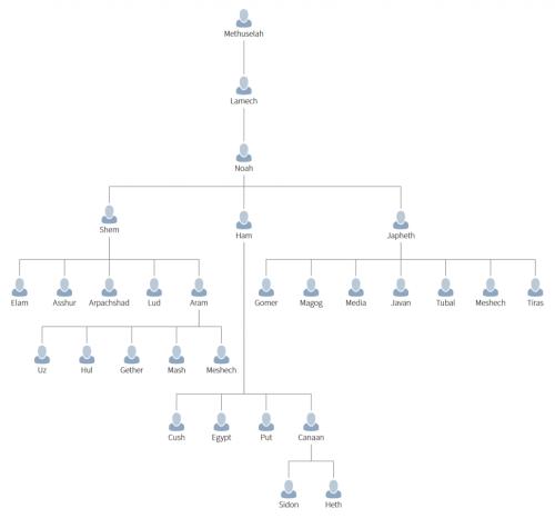 small resolution of family tree noah
