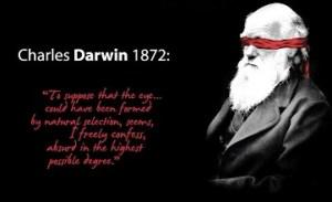 18 darwin eye poster