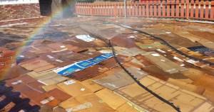 cardboardfarm