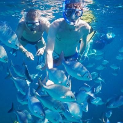 在古巴潜水