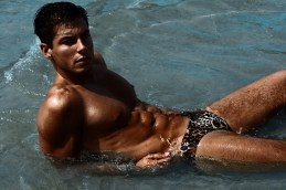 MARCUSE Jungle brown 1