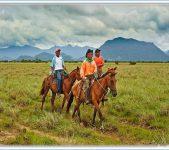 Local Cowboys  or Vaqueros