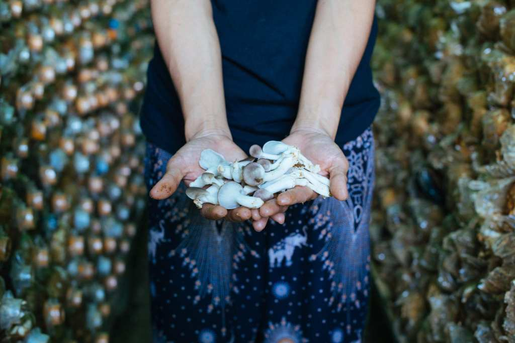 May holding mushrooms | © Neha Rathore