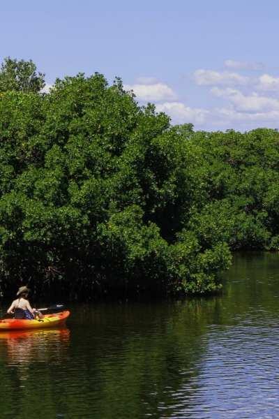 Kayaking © | pxhere