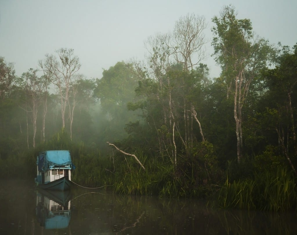 Sunrise on the Sekonyer River in Borneo | © JMcurto/Shutterstock