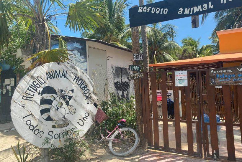Refugio Animal Holbox | © Nikki Vargas