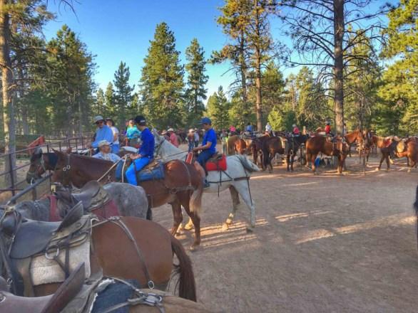 Bryce Canyon - 00044