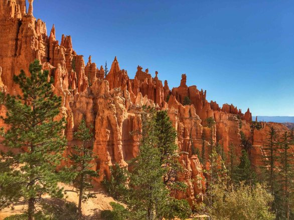 Bryce Canyon - 00052