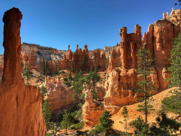 Bryce Canyon - 00059