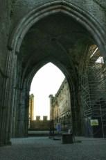 Cashel, Cahir et Blarney 13 Fev 2008 030