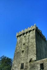 Cashel, Cahir et Blarney 13 Fev 2008 181
