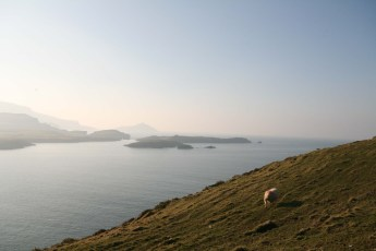 Ring of Kerry - 00065