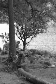 Glendalough - 00011