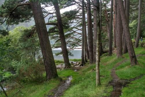 Glendalough - 00029