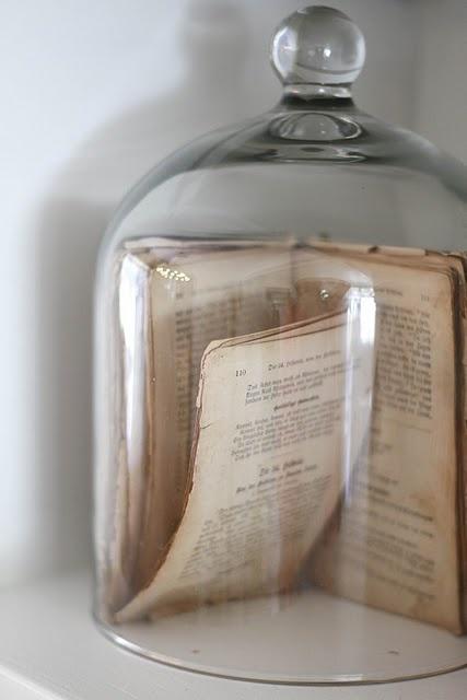 globe en verre 10 id es pour une d co sous cloche une hirondelle dans les tiroirs. Black Bedroom Furniture Sets. Home Design Ideas