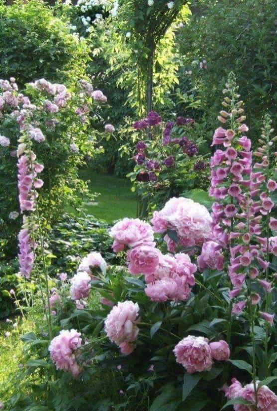 amenager-jardin-paysager- (8)