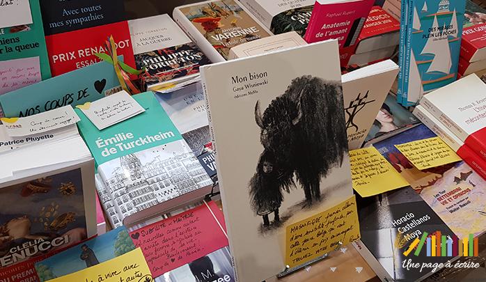 Gaya Wisniewski, Mon Bison ( Editions MeMo, 2018)