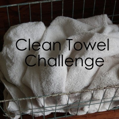 Pinterest Challenge Day 2: Clean Towels
