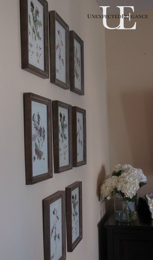 Wall of Pictures in Living Room from Unexpected Elegance