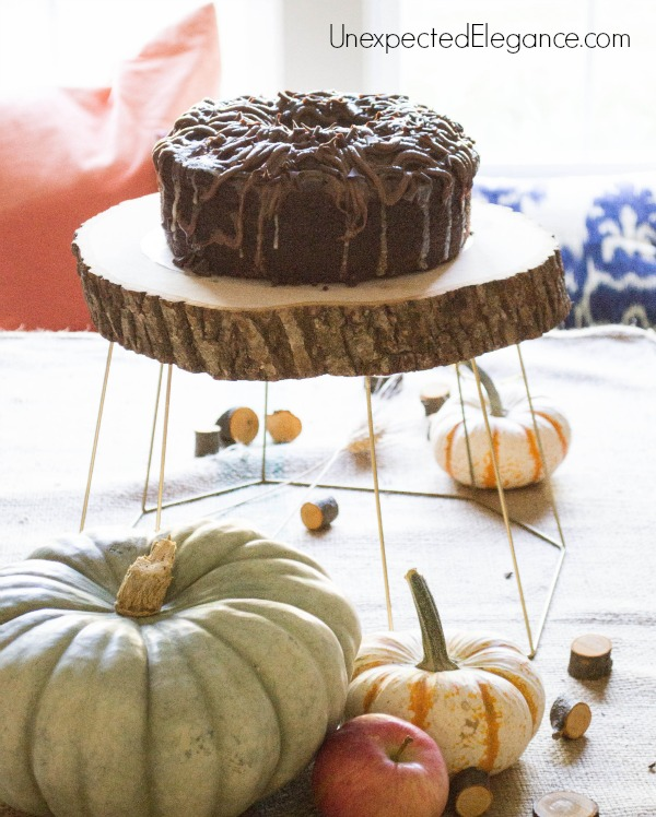 This super easy DIY cake stand or plant holder only takes seconds to make.  It's a great piece to add to your fall decor or any time of year!