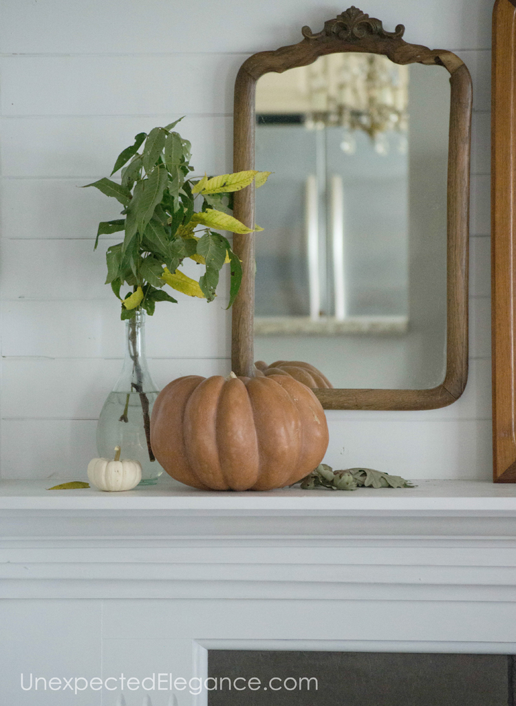 Simple and natural fall decor inspiration, to help get your creativity flowing!