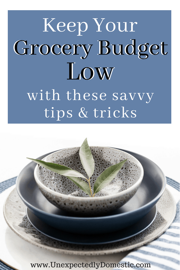 Learn how to keep your grocery budget low with these money saving tips and tricks! Check out the How I Saved Series, where I document how I save each week.