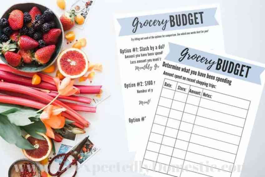 grocery budget worksheet
