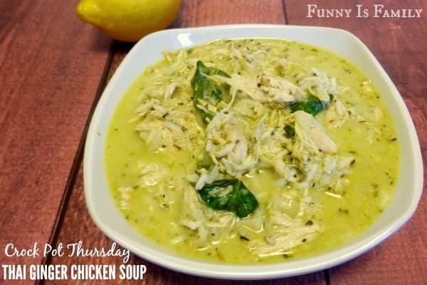 Crock Pot Thai Ginger Chicken Soup