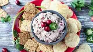 Creamy Cranberry Salsa Dip (Dairy Free)