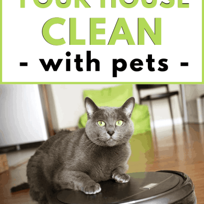 How to Keep Your House Clean with Pets (+ 10 must have items!)