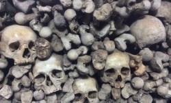 A photo of the wall in the Czech Chapel of Bones - Melnik, Czechia