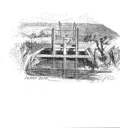 sketch diagram of rice plant [ 1200 x 920 Pixel ]
