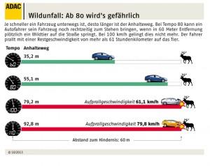 Wildunfall: Ab 80 wird's gefährlich. Infografik: ADAC.