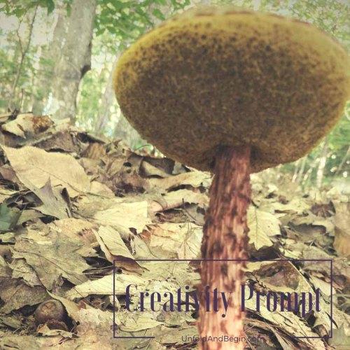 The secrets of the forest on UnfoldAndBegin.com
