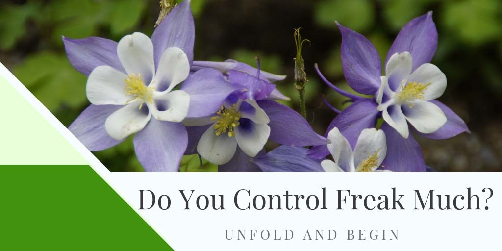 Do You Control Freak Much?