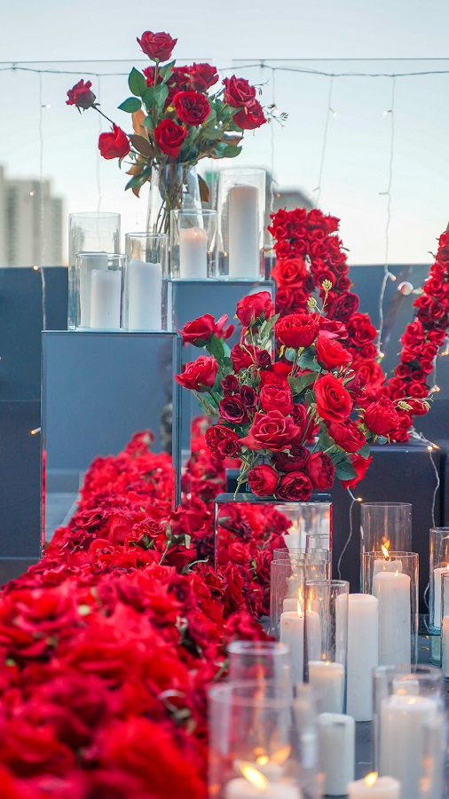 Red Roses on Rooftop