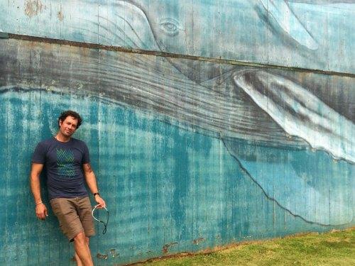 hawaii whale mural