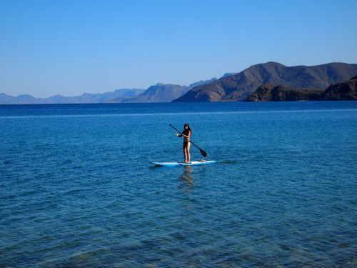 Sophia SUP'ing in the Sea of Cortez