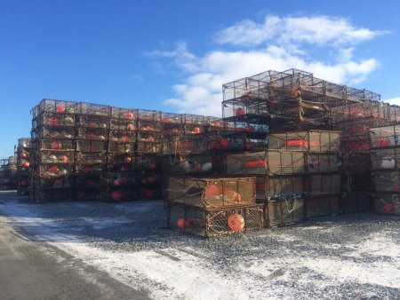 dutch harbor crab pots