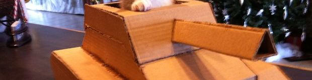 Meow-velous! Kitties get an upgrade with these cardboard cat mechs!