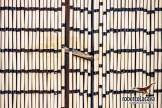 Ripacandida-Ugib-120611-0011