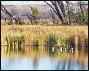 November 3: Minnesota Valley National Wildlife Refuge in Bloomington, Minn., yesterday. A great day for a November hike!
