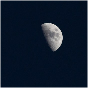 April 14: The moon over Bloomington, Minn., last night. First quarter — it will be full a week from tonight.