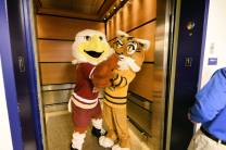 "Quinnipiac Bobcat and the Boston College Eagle give a face to the song … ""Love in an Elevator."""