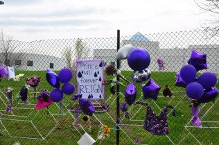 Purple posters, clothes, flowers and balloons.